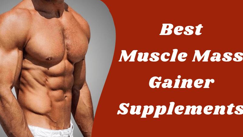 Mass Gainer Supplements – Buy Top 5 Best Mass Gainer Online